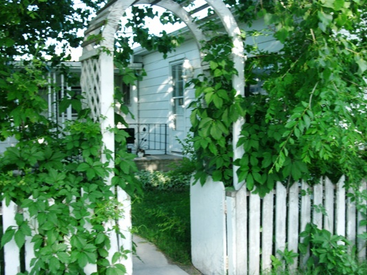 Curb appeal with trellis